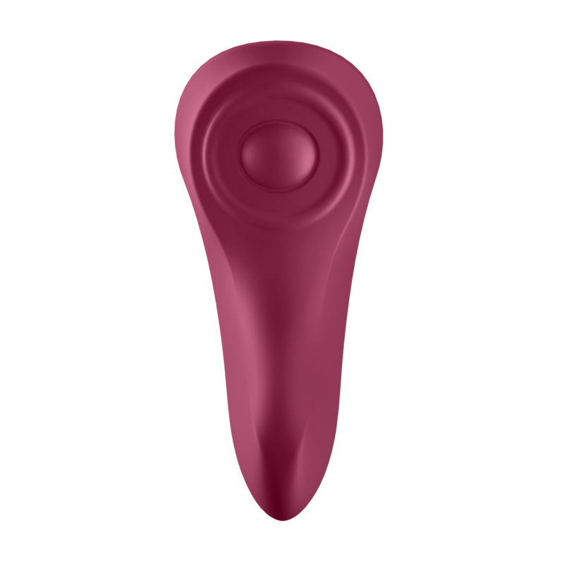 Satisfyer Sexy Secret Panty Vibrator 4